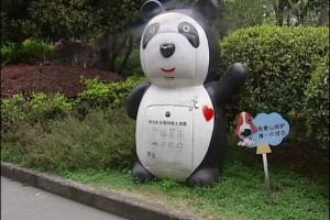 关于杭州熊猫旧衣服回收箱事件经过的描述