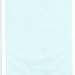 厂家批发空白CIQ证书/空白品质证书/空白熏蒸消毒证书
