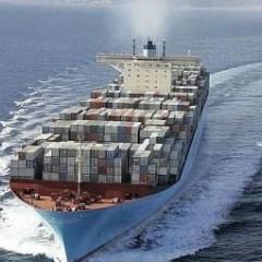 专业的海运,专业的物流服务