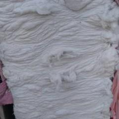 长期供应再生棉