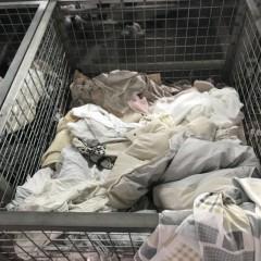 供应旧衣服大白、二白、黑料、擦机布等开花料
