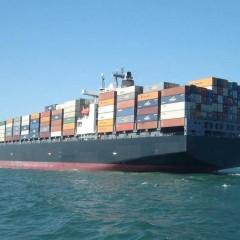 国内集装箱海运