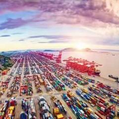 专业中非货运代理海运运输