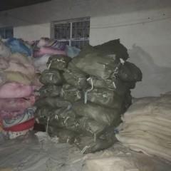 长期供应枕头棉,丝棉,棉被